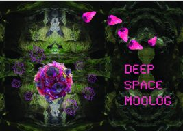 Deep Space Moolog logo