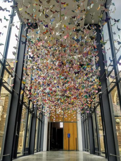 Kaleidoscope butterfly installation