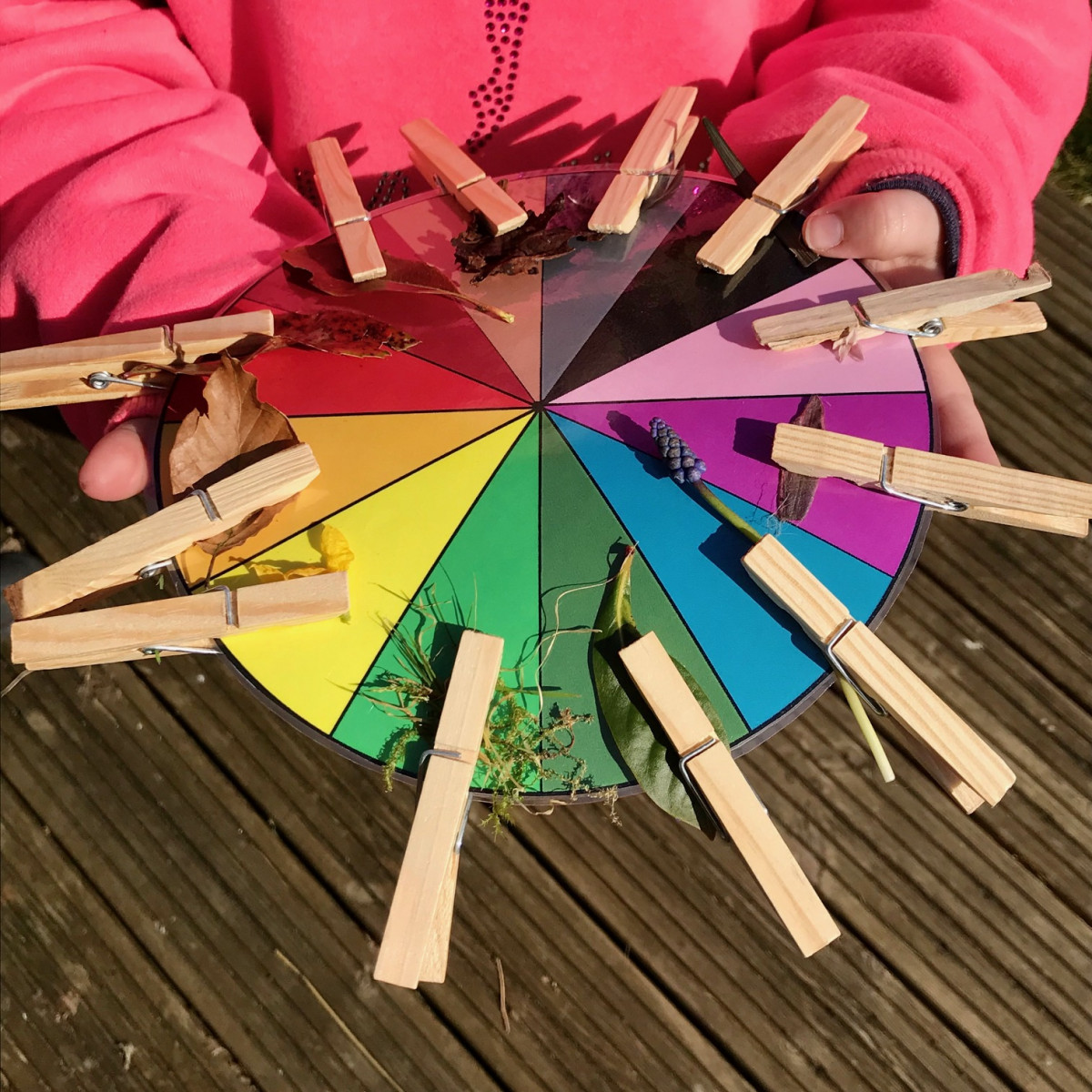 Child holding a colour wheel with leaves and flowers of matching colours attached with clothes pegs
