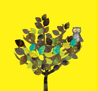 WOW! Said the Owl illustration by Tim Hopgood, of an Owl in a tree with a bright yellow background.
