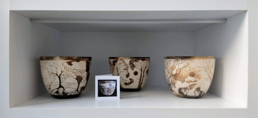 Three smoke fired ceramic bowls by Clare Humphry with sepia toned natural landscape designs
