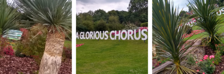 a selection of photos of the location of a poem at Kingsway Gardens, Scunthorpe